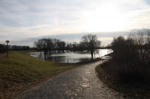elbwiesen_hochwasser_2012