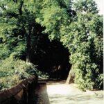 1991-05-Eine Tour durch Havelberg, Prälatenweg, Foto-© Heimatverein Havelberg e.V. – Repro fweDESIGN