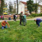 20210426_ Der Rasen wird vom Unkraut befreit, Foto-© Dieter Haase